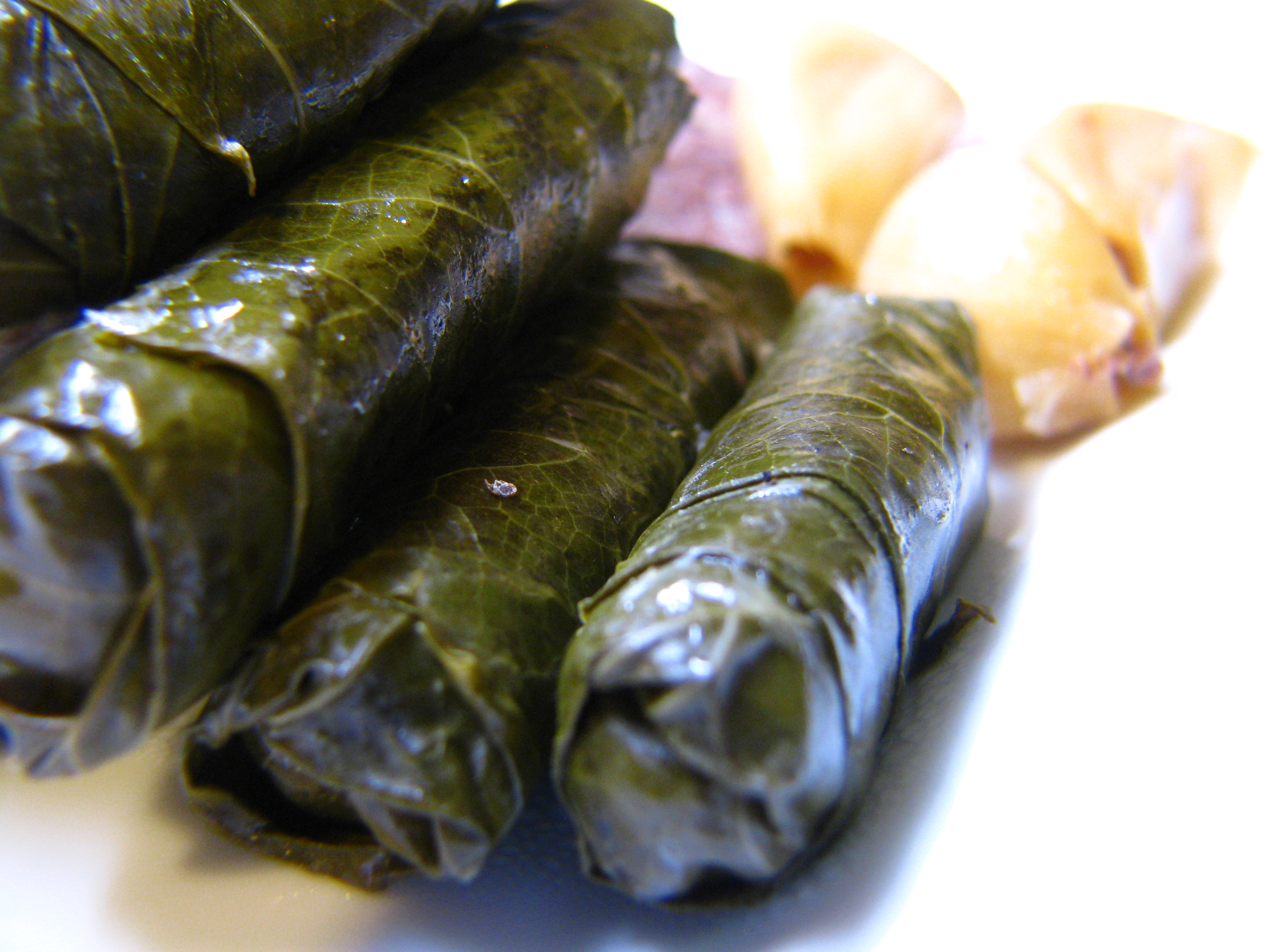 Vegetarian Stuffed Grape Leaves Syrian Cooking